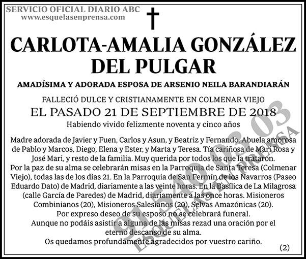 Carlota-Amalia González del Pulgar